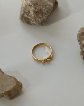 Argon 14K Gold Ring
